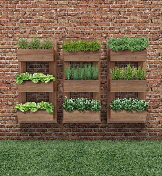 11 Jardines verticales