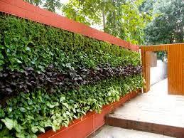 jardin vertical bonita