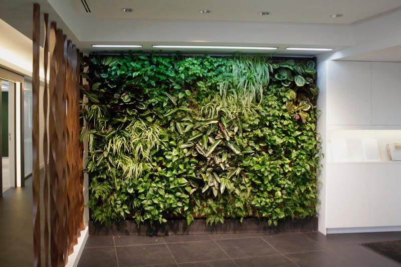 jardin vertical de interior