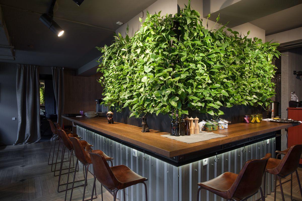 jardin vertical interior hermoso