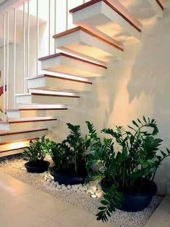 Arbustos para jard n 31 ideas para escoger el tuyo for Modelos de jardines interiores