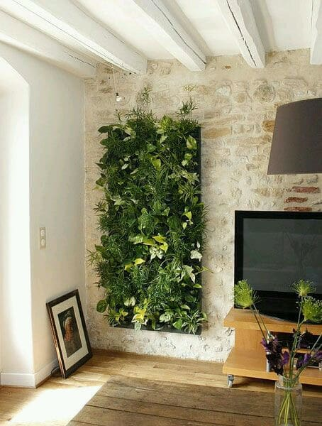 Jardin Vertical de Pared