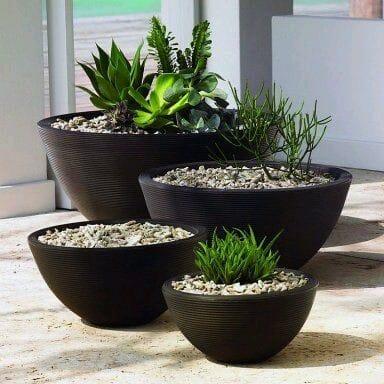 Arbustos para jard n 31 ideas para escoger el tuyo - Macetas para jardin exterior ...