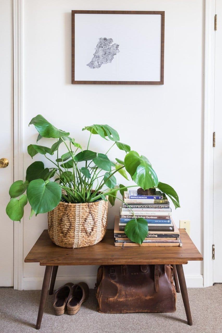 Ideas Para Decoración de Jardines Internos - Estreno Casa