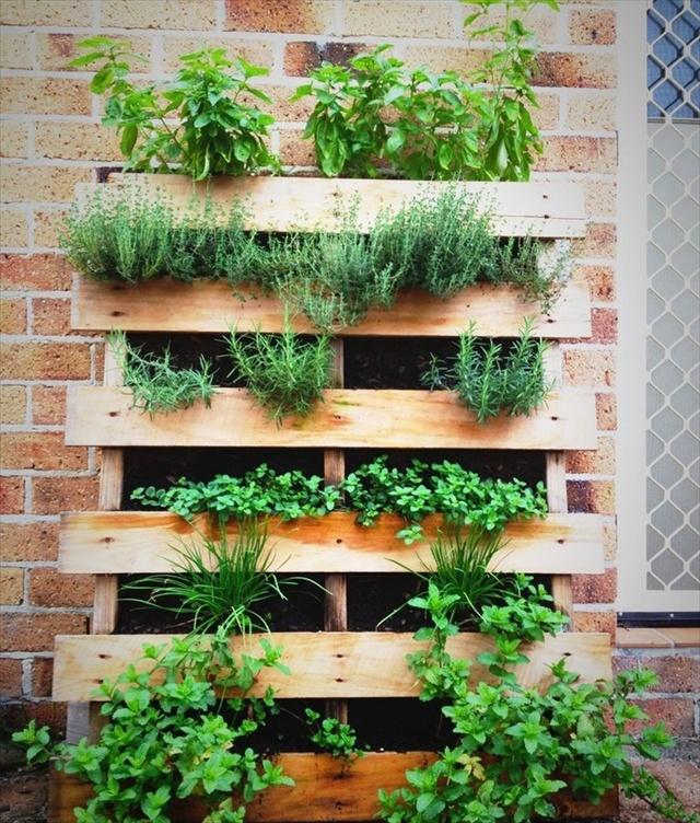 jardn vertical con plantas verdes - Jardin Vertical Con Palets