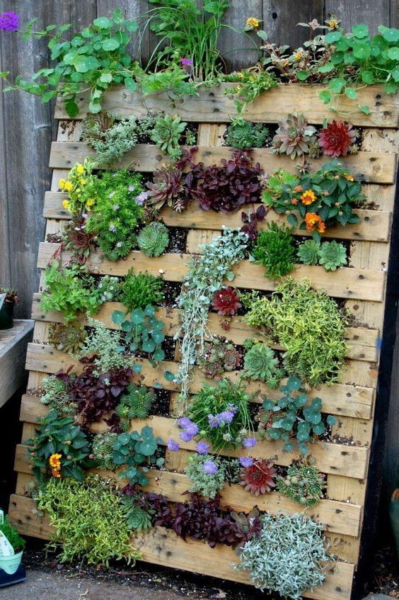 09 jardines verticales pallets