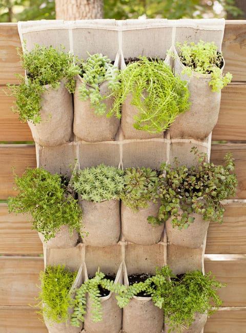 16-1 jardines verticales zapateras