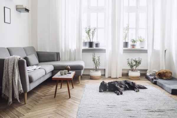 como-decorar-un-salon-rectangular-istock4