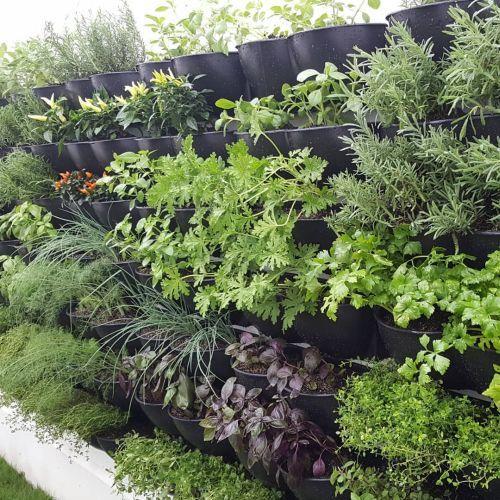 ideas-para-cerrar-una-terraza-instagram-dr-hortus