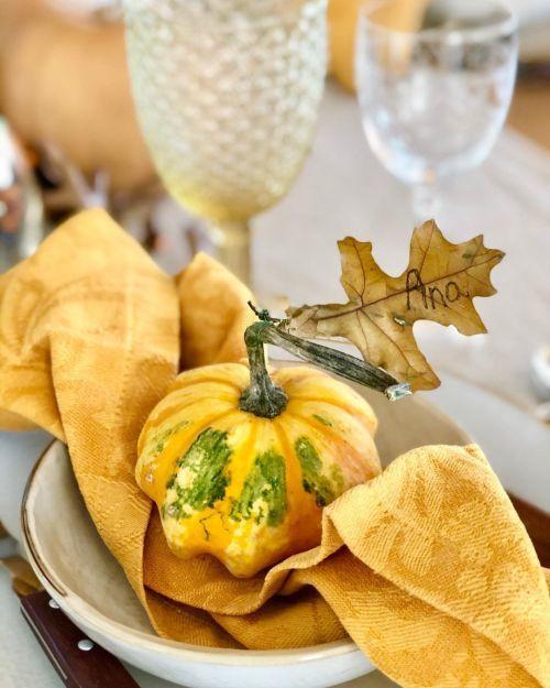 Calabacitas decorando plato